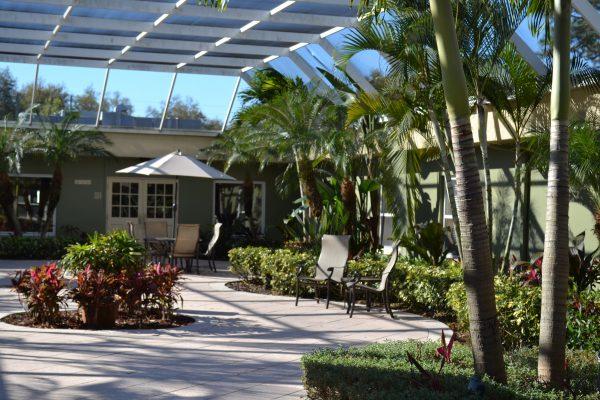 Garden Patio Oasis 2
